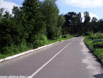 Дорога между секторами. Лесное кладбище города Киева
