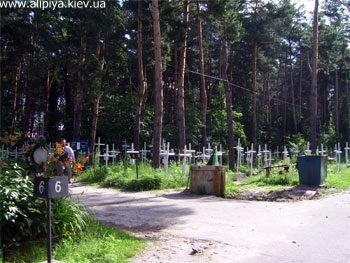 Общий вид на сектор кладбища, где находится могилка Матушки Алипии Голосеевской